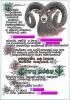 Pasovací list na lovce zvěře mufloníPasovací list na lovce zvěře mufloní