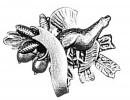 Odznak tetřevOdznak tetřev